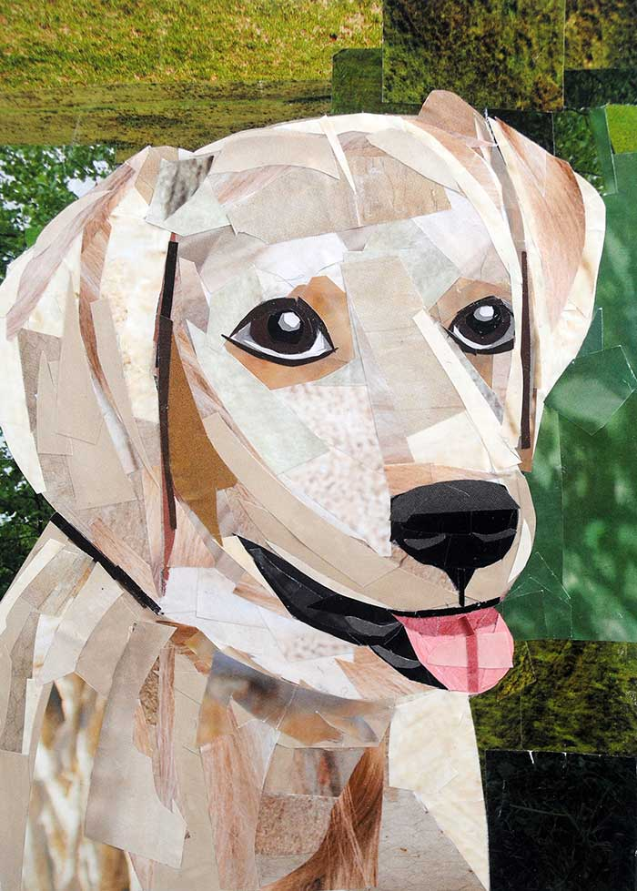 Bark Wahlberg the Golden Retriever by collage artist Megan Coyle