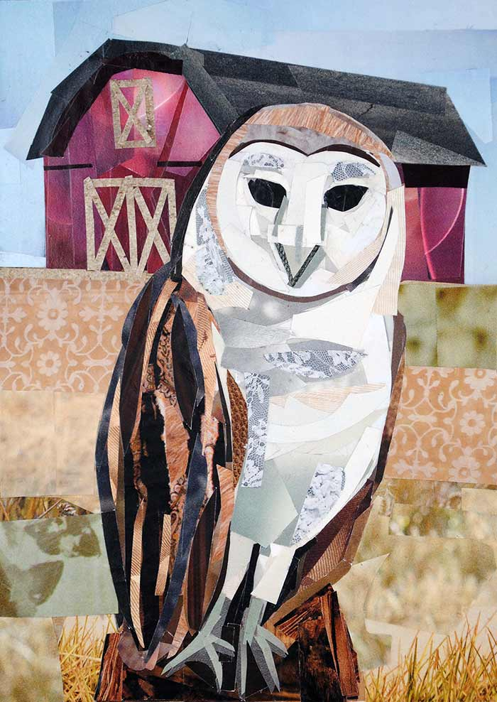 Barn Owl by collage artist Megan Coyle