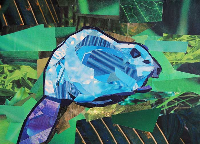 Blue Beaver by collage artist Megan Coyle