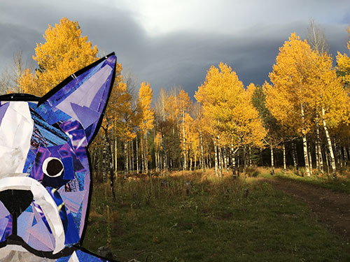 Bosty goes to Flagstaff by collage artist Megan Coyle