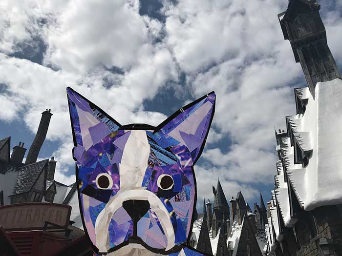 Bosty goes to Harry Potter World by Megan Coyle