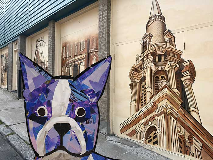 Bosty the Boston Terrier by Megan Coyle goes to Quebec City