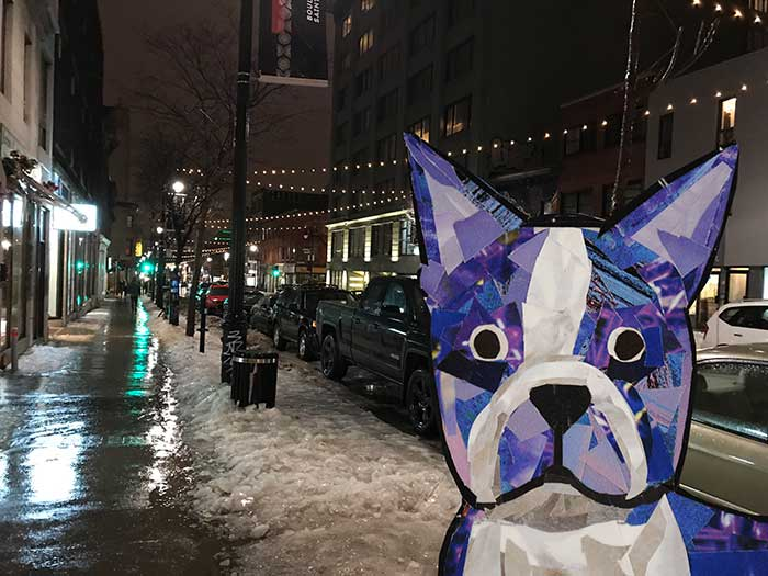 Bosty the Boston Terrier by Megan Coyle goes to Montreal