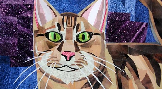Cat-with-Attitude