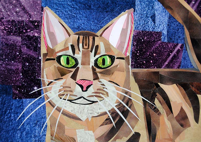 Cat with Attitude by collage artist Megan Coyle