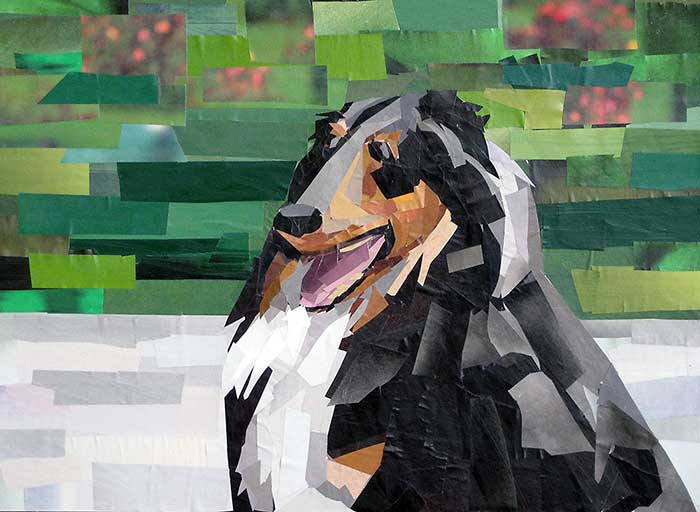 Charlie by collage artist Megan Coyle
