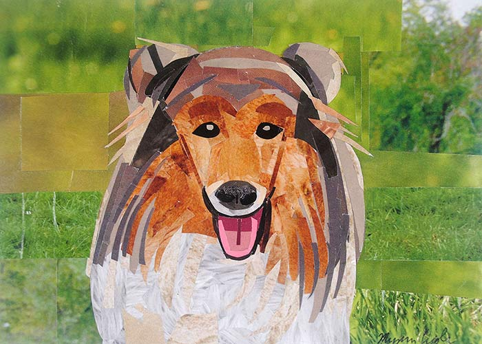 Collie by collage artist Megan Coyle