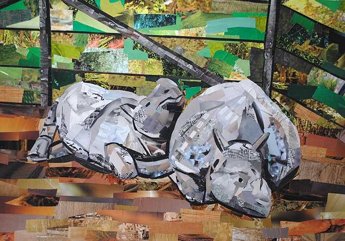 Cuddling-Rhinos
