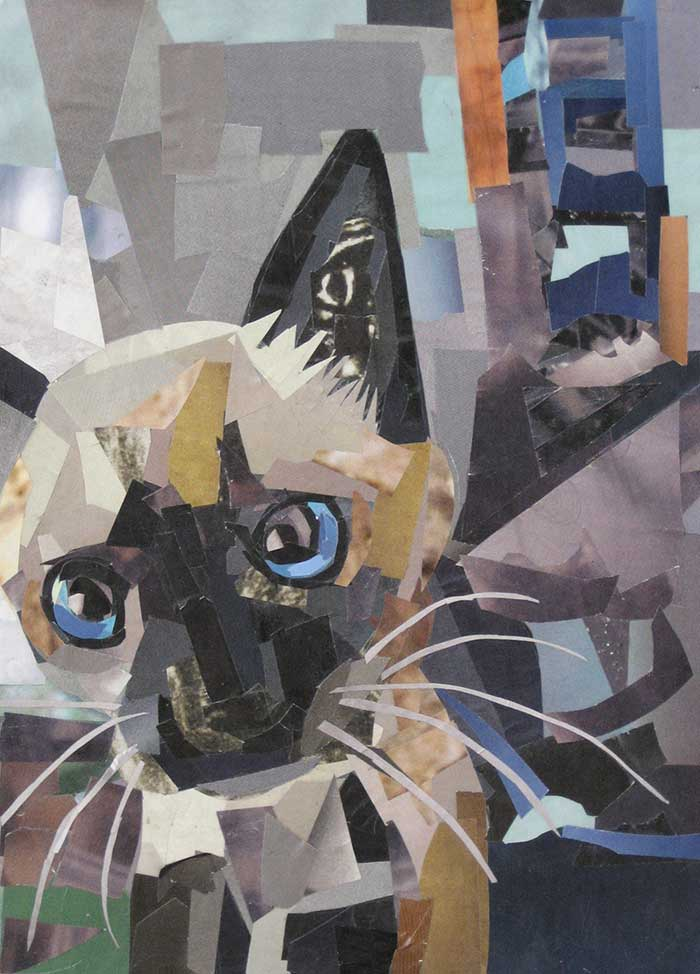 The Curious Kitten by collage artist Megan Coyle