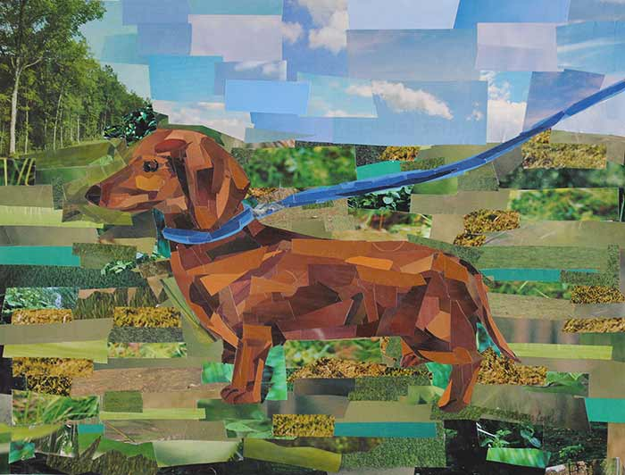Dachshund by collage artist Megan Coyle