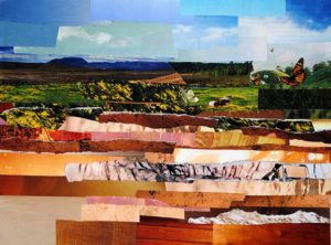 Fields by collage artist Megan Coyle