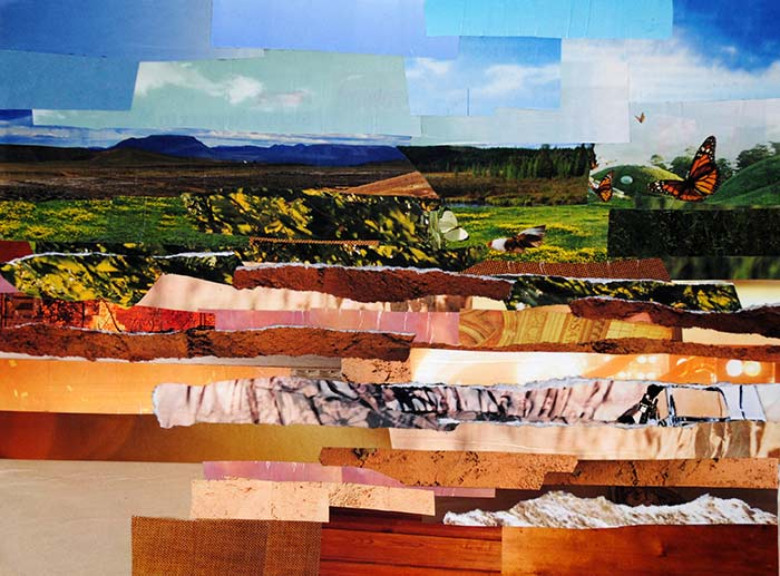 Abstract Fields by collage artist Megan Coyle