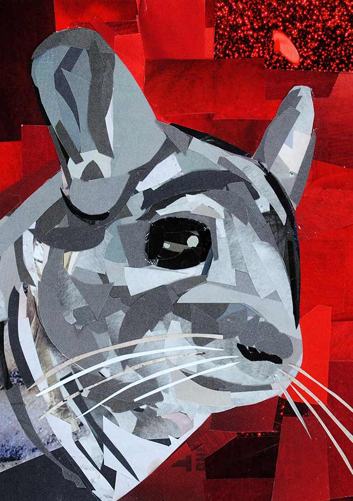 Fluffy the Chinchilla - Profile by collage artist Megan Coyle