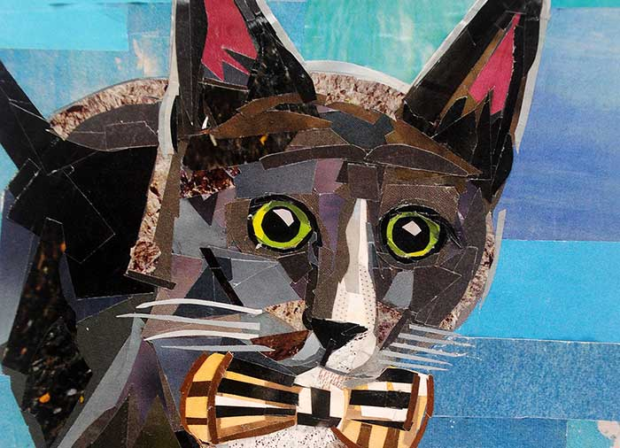 Franklin the Cat by collage artist Megan Coyle