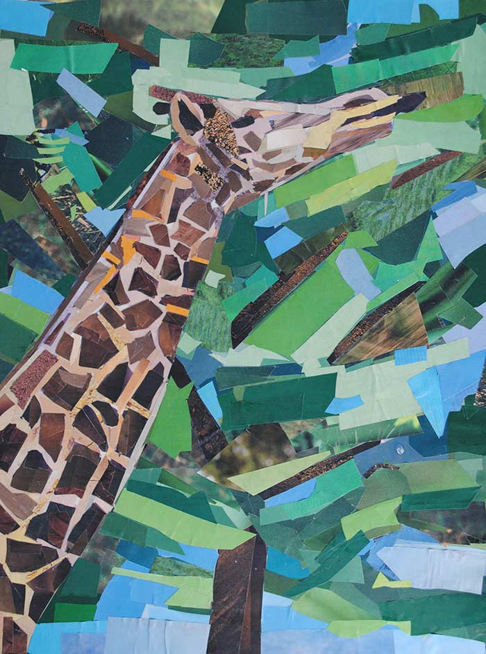 Giraffe by collage artist Megan Coyle