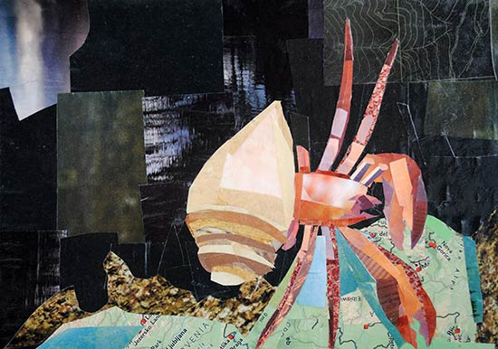 Hermit Crab by collage artist Megan Coyle