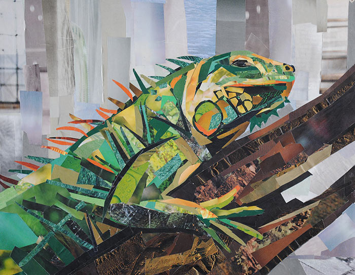 Iguana by collage artist Megan Coyle