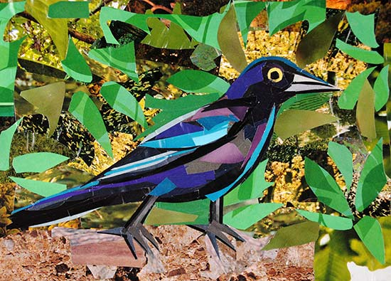 Inquisitive Birdy by collage artist Megan Coyle
