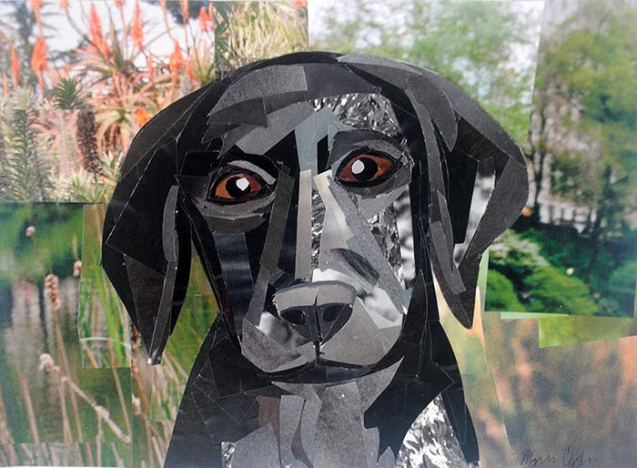 Lab Puppy is a collage by Megan Coyle