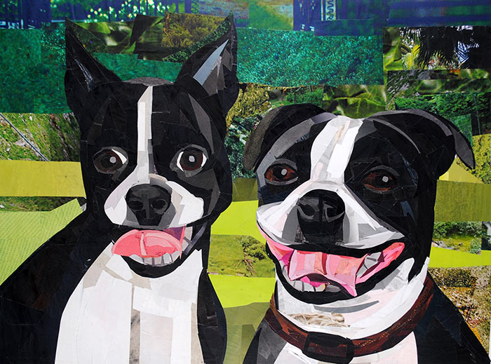 Meet the Bostons - Ivy and Molly by collage artist Megan Coyle
