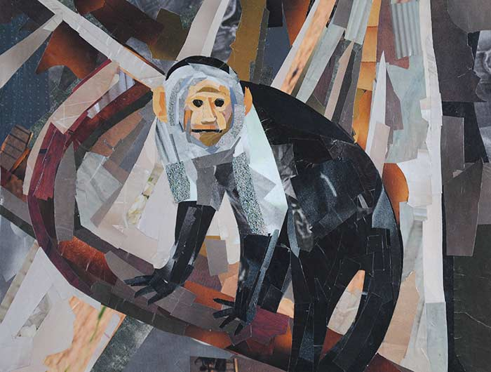 Mr. Monkey by collage artist Megan Coyle