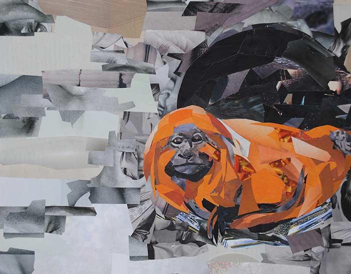 Orange Monkey by collage artist Megan Coyle
