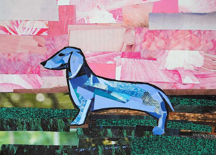 Poised Blue Dachshund by Megan Coyle