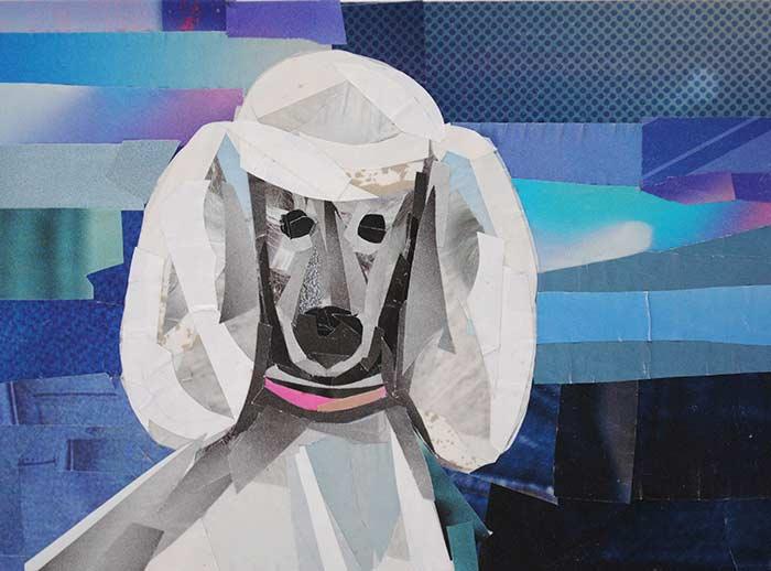 Poodle by collage artist Megan Coyle
