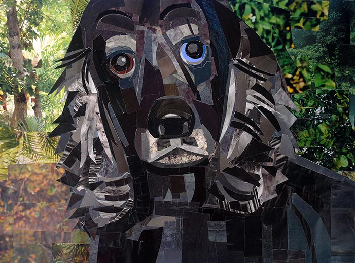 Portrait of a Dog by collage artist Megan Coyle