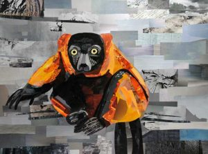 Red Ruffed Lemur by collage artist Megan Coyle