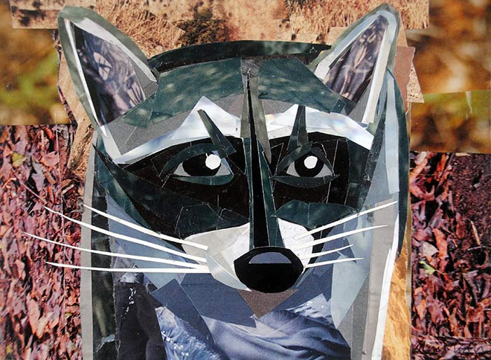 Rocky the Raccoon by collage artist Megan Coyle