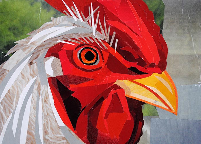 Rooster of Crowsville by Megan Coyle
