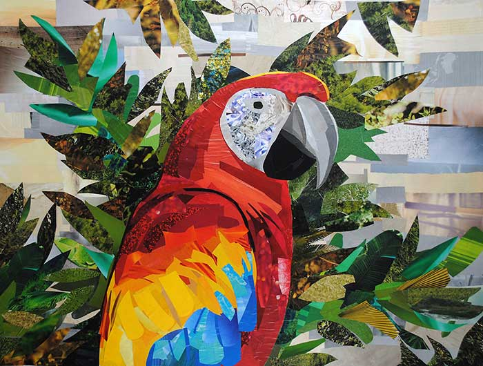 Scarlet Macaw by collage artist Megan Coyle