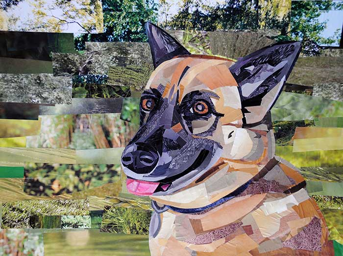 Shelby by collage artist Megan Coyle