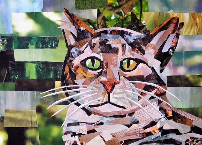 Tabby Cat by collage artist Megan Coyle