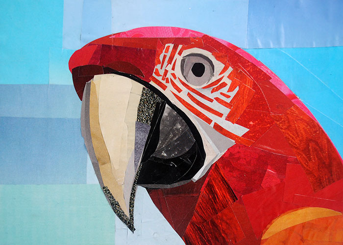 Talking Like a Parrot by collage artist Megan Coyle