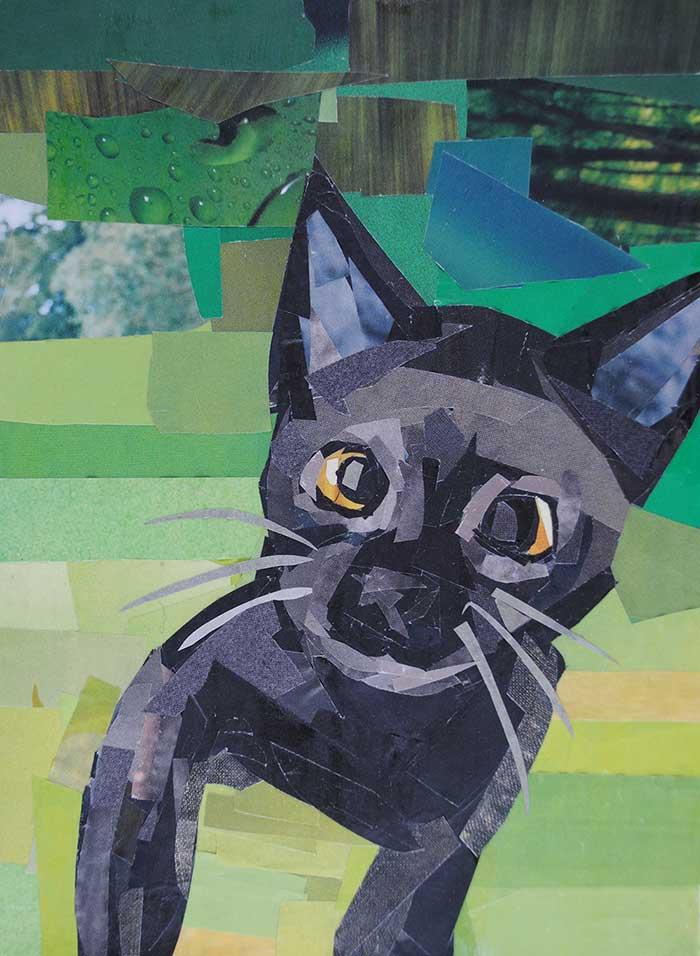 Black Cat by Megan Coye