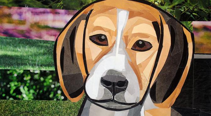 The-Contemplative-Beagle
