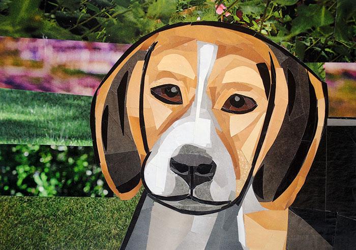 The Contemplative Beagle by collage artist Megan Coyle