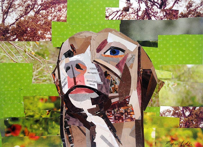 The Distracted Pit Bull by collage artist Megan Coyle