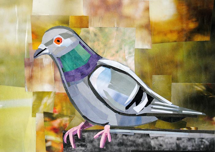 The Exotic Pigeon by collage artist Megan Coyle
