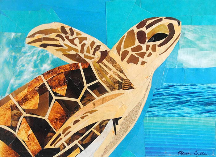 The Soaring Sea Turtle by collage artist Megan Coyle