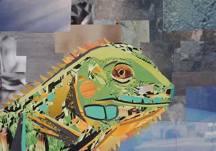 The Wise Lizard by collage artist Megan Coyle