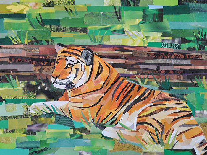 Tiger by collage artist Megan Coyle