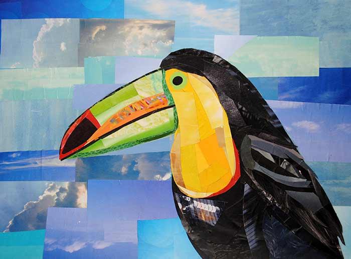 Toucan by collage artist Megan Coyle