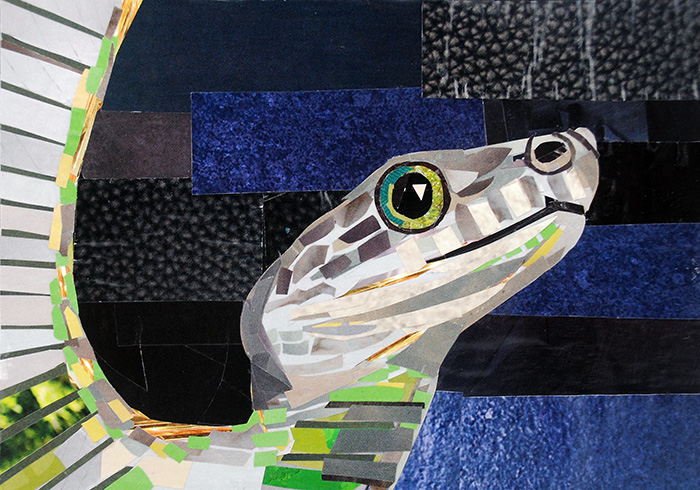 What a Snake by collage artist Megan Coyle