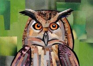 Who Gives a Hoot by collage artist Megan Coyle