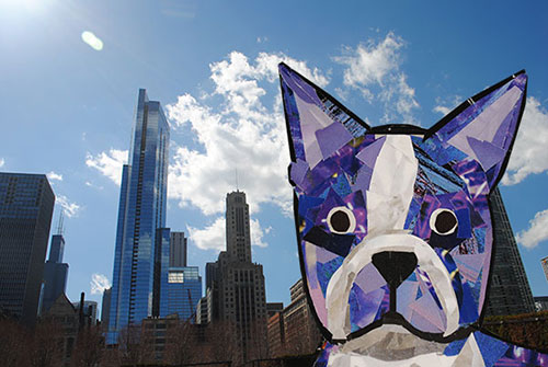 Bosty goes to Chicago by Megan Coyle