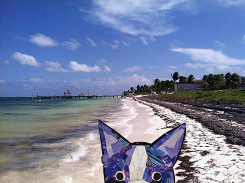 Bosty goes to Mexico by collage artist Megan Coyle