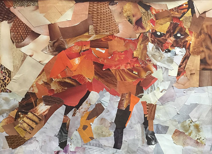 Collages from students in Columbia, MD inspired by Megan Coyle's art